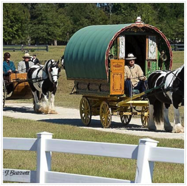 The 2008 Ocala Expo.