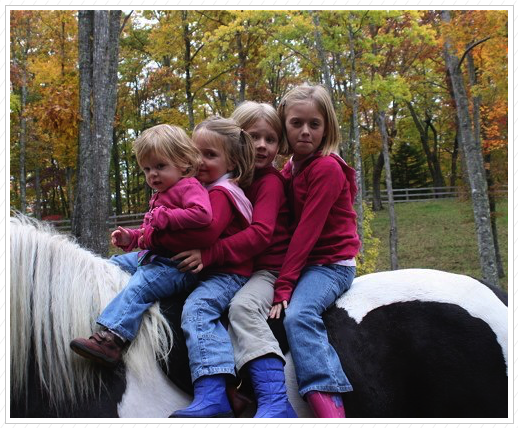 4 on a horse???